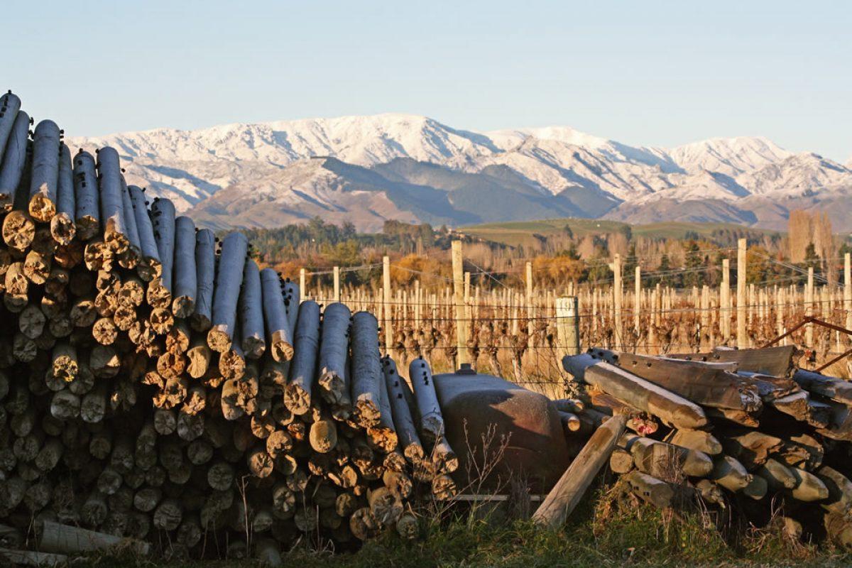 Bladen Hand-crafted Wines